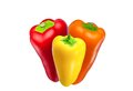 Red, yellow and orange pepper Stock Photography