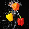Red yellow orange peppers water splash black background Stock Photography