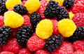 Red and yellow raspberry mulberry background Royalty Free Stock Photo
