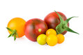 Red and Yellow Tomatoes Isolated on White Royalty Free Stock Photo