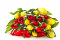 Red and yellow tulip flowers Royalty Free Stock Photo
