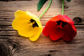 Red and yellow tulips on a rustic Royalty Free Stock Photo