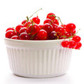 Redcurrant in bowl Stock Images