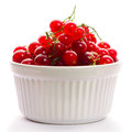 Redcurrant in bowl Stock Image