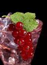Redcurrant cocktail Royalty Free Stock Image