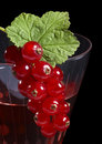 Redcurrant on glass Royalty Free Stock Photography