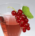 Redcurrant and glass Royalty Free Stock Images