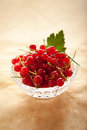 Redcurrant red currant in a crystal vase on a light brown background Stock Image