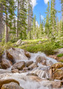 Redfish lake creek tributary sawtooth national recreation area id near stanley idaho Royalty Free Stock Photos