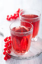 Redrurrant juice and berry fresh Stock Images