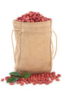 Redskin Peanuts Royalty Free Stock Photography
