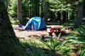 Redwood Tent Camping Stock Photo