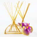 Reed diffuser Royalty Free Stock Photo