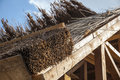 Reed roof Royalty Free Stock Photo