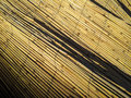 Reed texture shadows straw with background Royalty Free Stock Photography