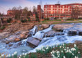 Reedy river waterfalls greenville south carolina g garden view of at falls park in the middle of downtown Stock Photos