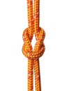 Reef Knot Stock Images