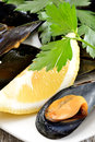 Ref mussels with lemon appetizer reef cooked in boiling water juice Stock Photos