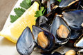 Ref mussels with lemon appetizer reef cooked in boiling water juice Royalty Free Stock Photography