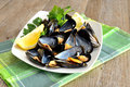 Ref mussels with lemon appetizer reef cooked in boiling water juice Royalty Free Stock Photos