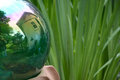 Reflecting ball a with the mirrored image of a small storage building reflection and green iris plants Royalty Free Stock Photography