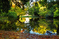 Reflection in autumn park at a sunset Royalty Free Stock Photography