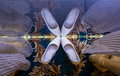 Reflection of bride s wedding shoes from top view Stock Photos