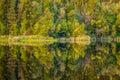 Reflection at Lake Matheson, New Zealand Royalty Free Stock Photo