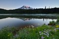 Reflection lake sunrise mt rainier national park washington state Royalty Free Stock Photography
