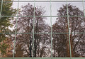 Reflection of trees in windows at fall Stock Photography
