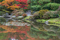 Reflections autumn colors japanese garden of fall foliage and buddhist stone lantern in pond of copy space Royalty Free Stock Images