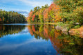 Reflections in pond on sunny autumn day Royalty Free Stock Photo