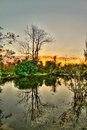 Everglades Sunset - National Park - Reflections at Sunset Royalty Free Stock Photo