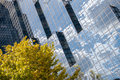 Reflective glass on building mirror Royalty Free Stock Photo