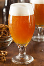 Refreshing Belgian Amber Ale Beer Royalty Free Stock Photos