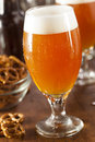 Refreshing Belgian Amber Ale Beer Stock Images