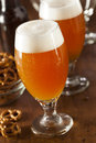 Refreshing Belgian Amber Ale Beer Royalty Free Stock Photo