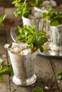 Refreshing cold mint julep for the derby Stock Images