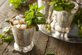 Refreshing cold mint julep for the derby Royalty Free Stock Images