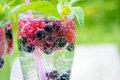 Refreshing summer drink with sparkling water and fresh berries Royalty Free Stock Photo