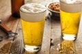 Refreshing Summer Pint of Beer Royalty Free Stock Photo