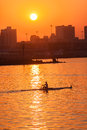 Regatta rowing skull sunrise colors male rower silhouetted in action on harbor waters at durban club head of the bay on th july Royalty Free Stock Images