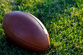 A Regulation Football on a Natural Grass Field Stock Photography