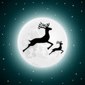 Reindeer and baby deer jumping