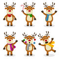 Reindeer cartoon christmas set collection of six funny characters in different positions and expressions isolated on white Royalty Free Stock Images