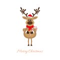Reindeer of christmas with caramel cane on a white background Stock Photography