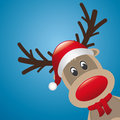 Reindeer red nose and hat scarf Royalty Free Stock Images