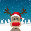 Reindeer red nose santa claus hat Royalty Free Stock Photo