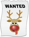 Reindeer Rudolph wanted