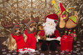 Reindeer yorkshire terrier dogs Stock Photos